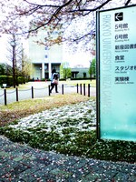 雪と桜.JPG