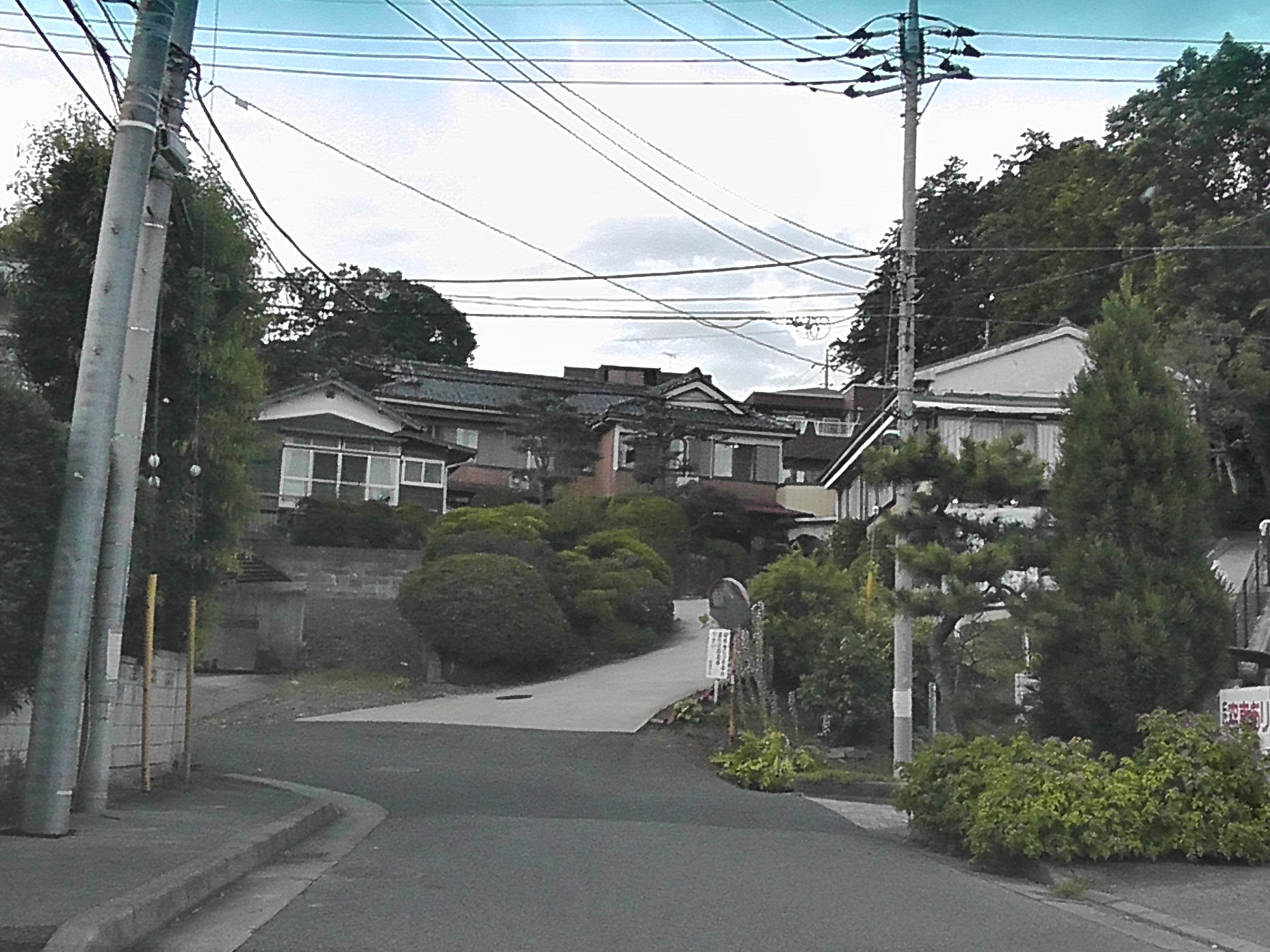 冨桝 (1).JPG